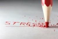 Stress! Een alternatief voor workshops & groepslessen - Sense Your Balance - IJsselstein