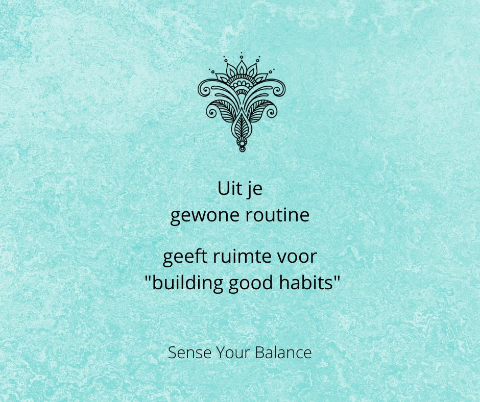 """Uit je gewone routine geeft ruimte voor """"building good habits"""" - Sense Your Balance"""